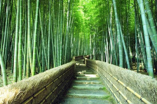 комплект делается из бамбука